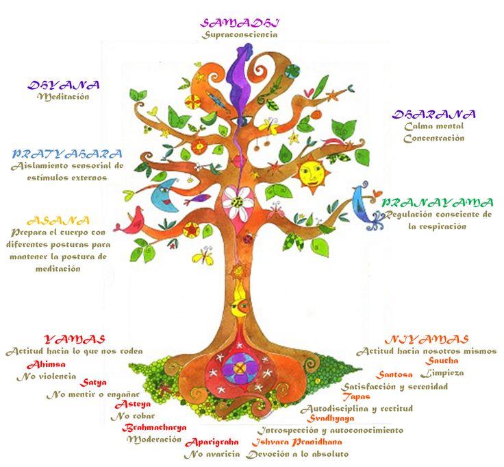 Niyama, il secondo ramo dell'Ashtanga Yoga – Samyavastha Yoga